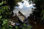 Amazone kanovaren 5 dagen